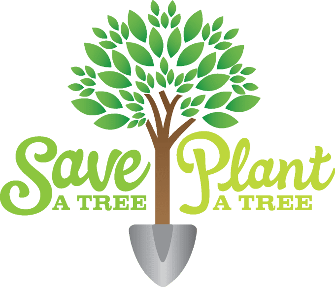 importance of protecting trees