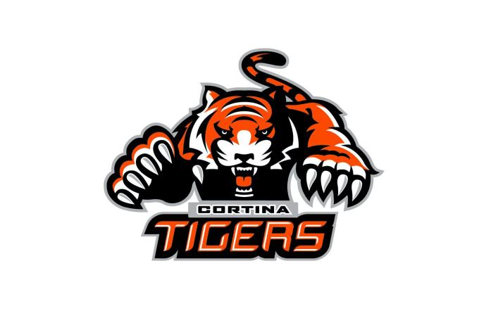 Tiger Logo Maker  Create Your Own Tiger Logo  BrandCrowd