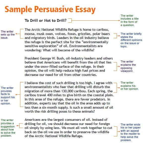 presidents power to persuade essay