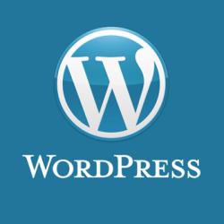 Как сделать логотип в wordpress 301