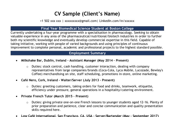 expertly design your cv or resume and linkedin profile by roscoe ireland