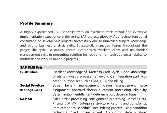 sap functional design, abap development, sap CRM webui, sap support