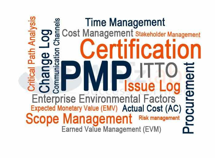 Stand Out of the Crowd by Showing the Tag of PMP Certified in Your Resume.