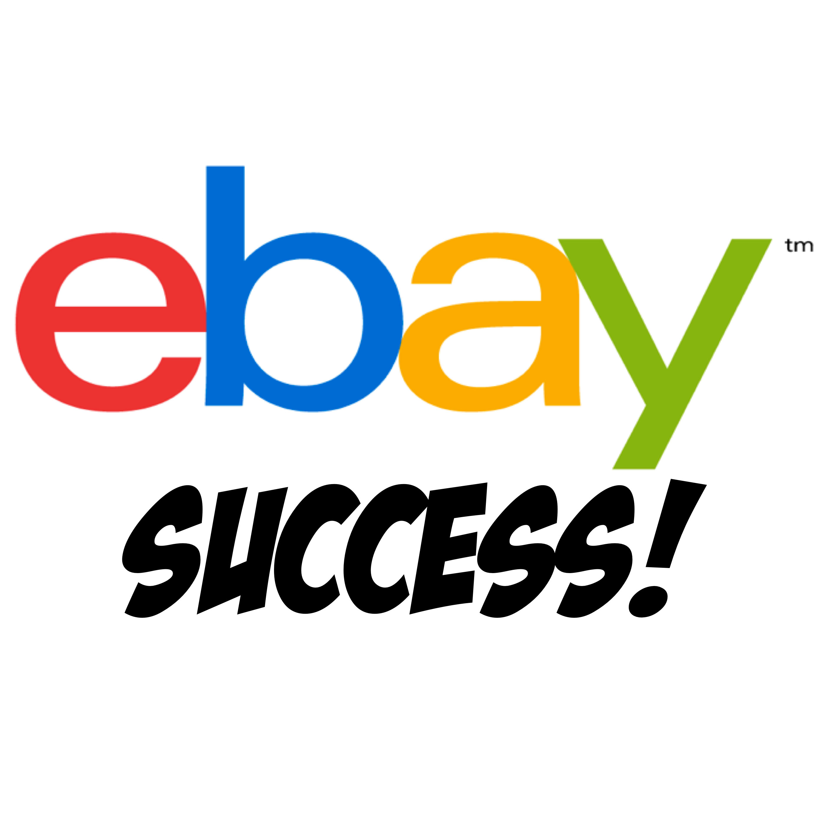 Review Your Ebay Store And Provide A List Of Suggestions By Saverill