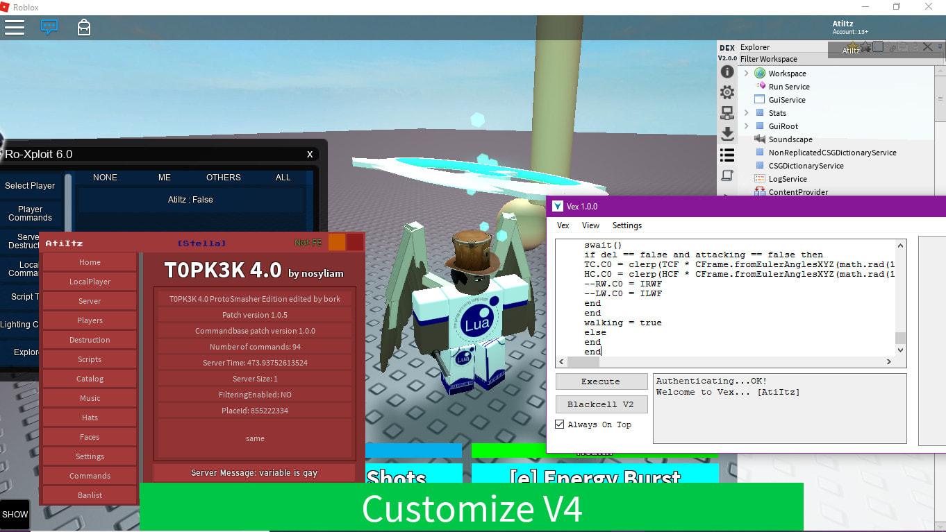 Make You A Custom Roblox Exploit By Insanedevelops
