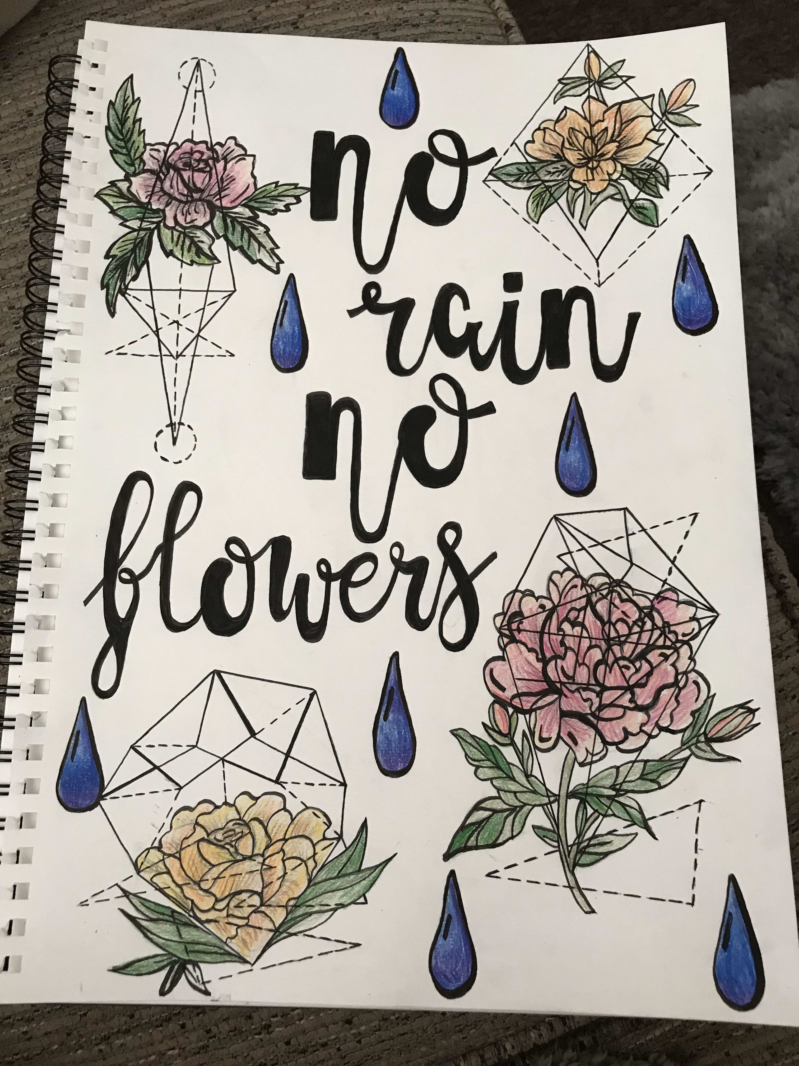 draw design paint anything flowers landscapes quotes and
