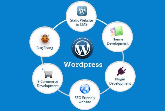 Be your wordpress developer by Tahiryasin1 | Fiverr