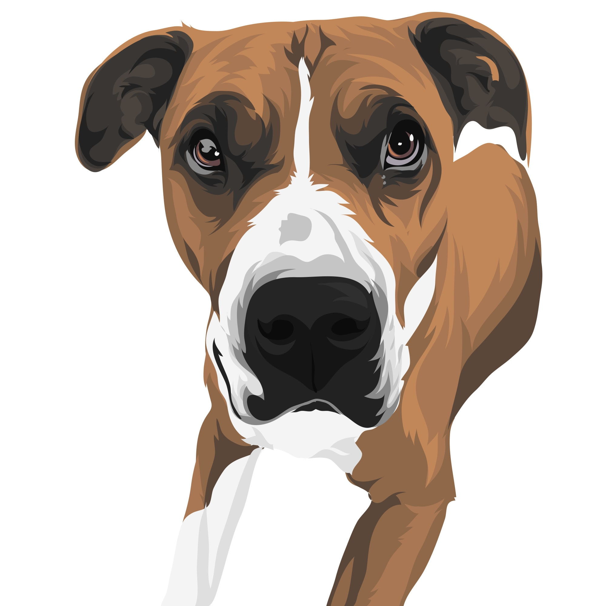 Turn Your Pet Into Cartoon Or Vector Within 1 To 2 Hours By Melocabral