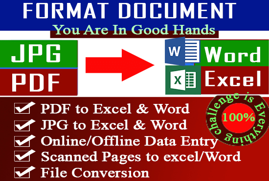 perfectly convert PDF to word to excel and do any data entry