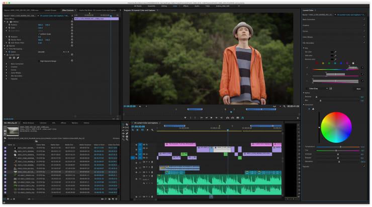 masking video editor