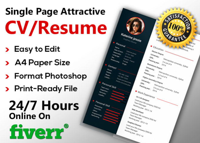 Provide A Professional Resume Writing Service By Alian100