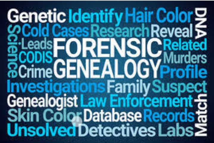 Assist In Criminology Law And Forensic Papers By Caleboo