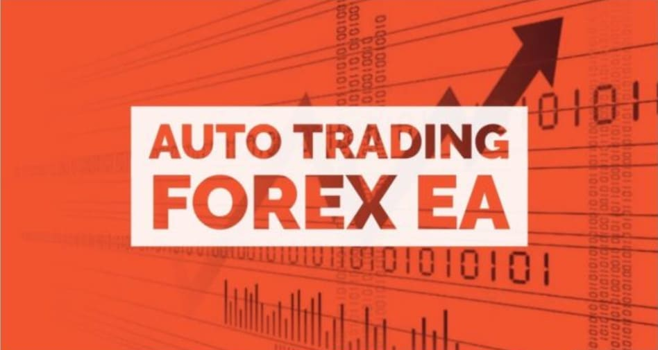 robot trading forex automated mindestbetrag in bitcoin investieren