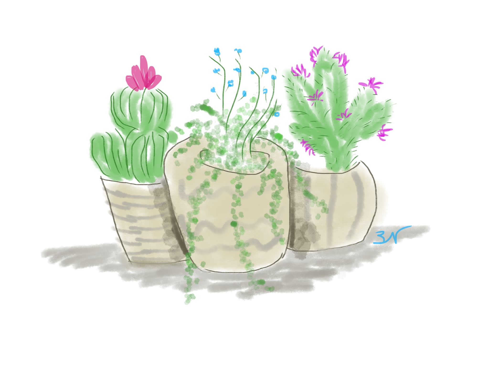 Create A Simple Plant Drawing In Pastel Water Color Or Ink By Luvsapplechips