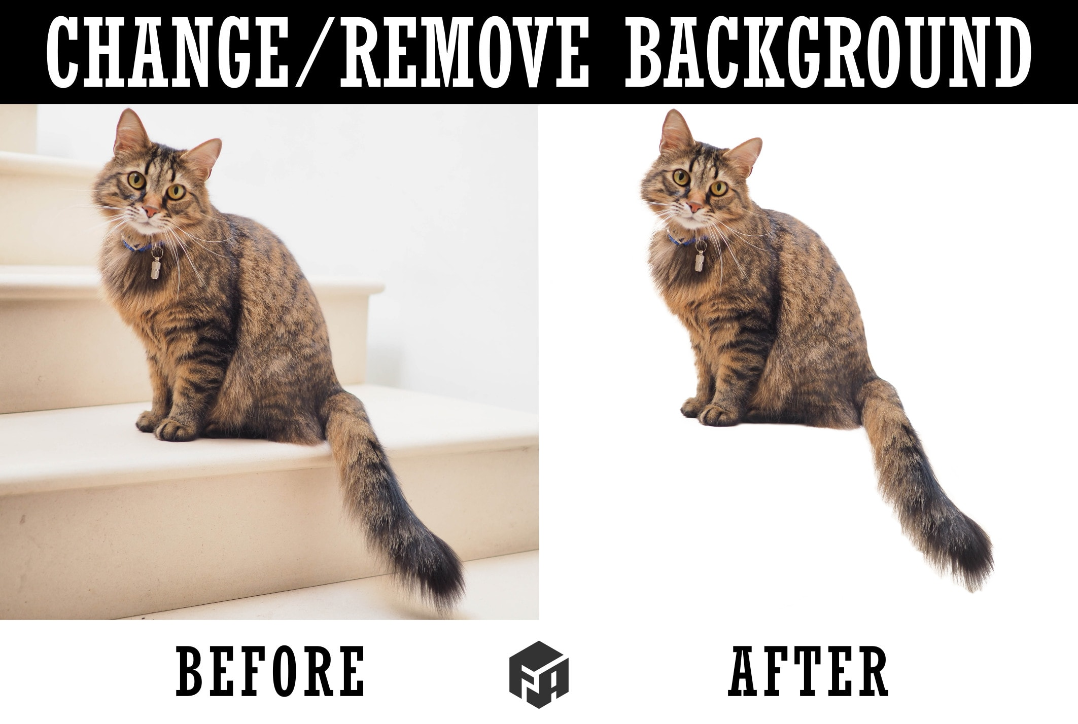 Remove Change Background Or Cut Out Images In Gimp By Fikriarsyadi