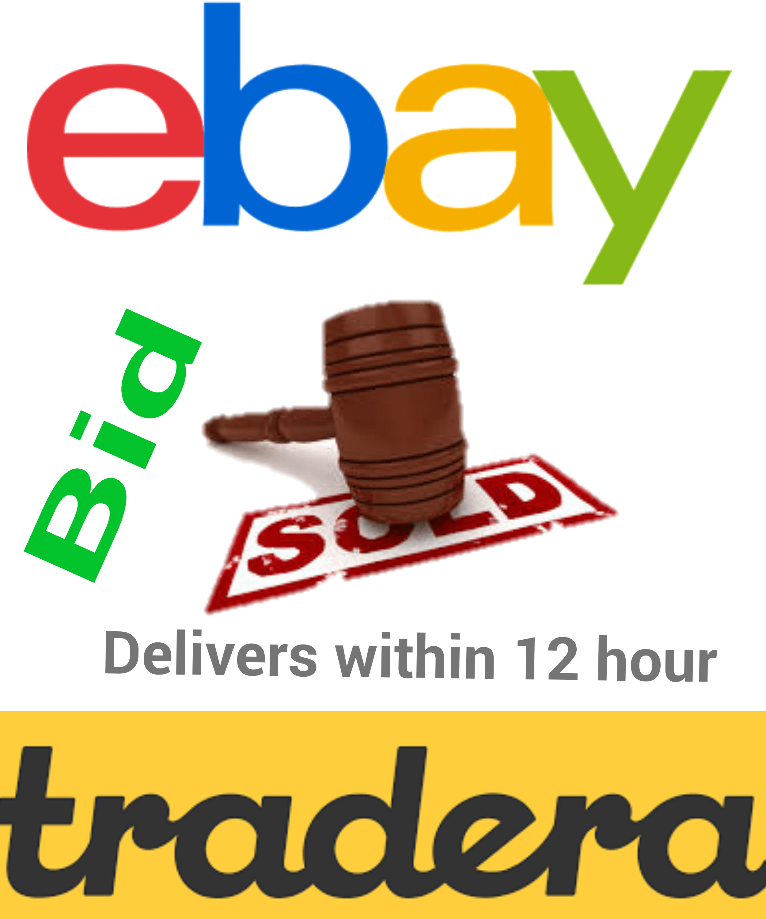 Bid On 5 Ebay Or Tradera Items Until They Sell Or End By Sikandarkhan267