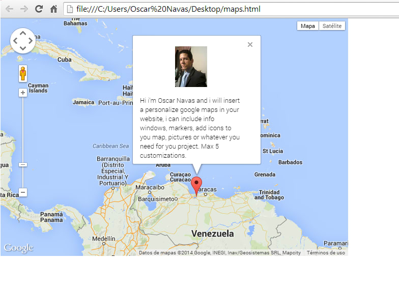 Insert a custom google map to your website by Navium