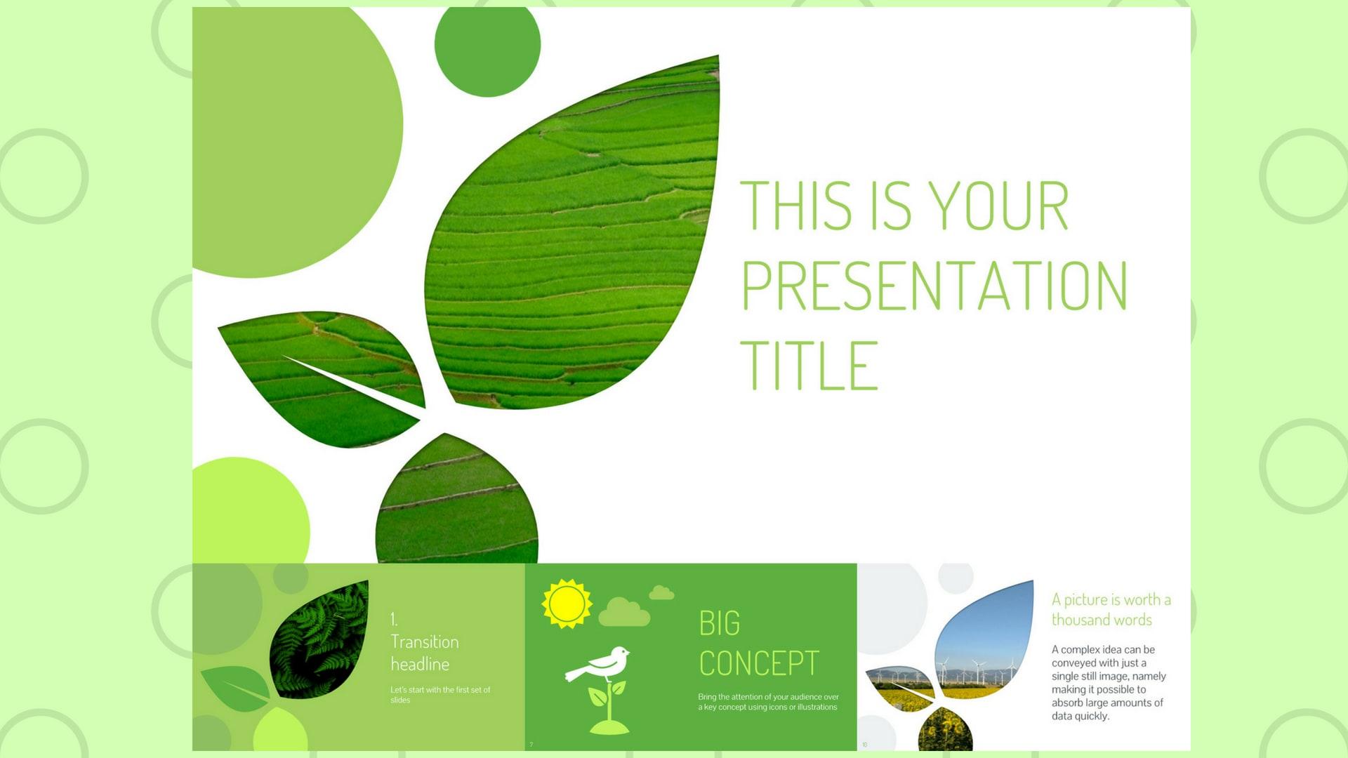 Mẫu slide powerpoint lấy cảm hứng từ thiên nhiên chuyên nghiệp