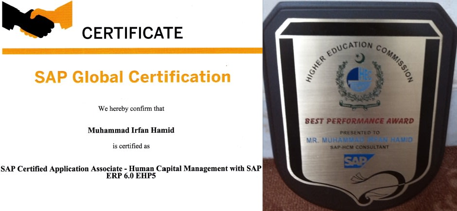 implement and support sap hcm hr slcm her and it software