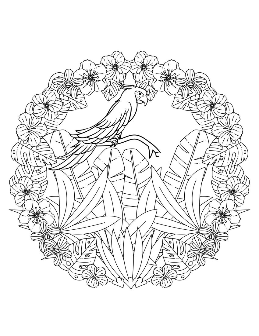 free coloring pages of jungle flowers | Flower Delivery. Better ... | 1100x850