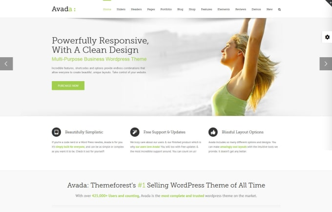Create a professional website with avada theme by Webmaster7