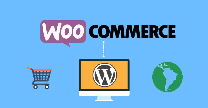 I will fix custom wordpress woocommerce website issue, error or css