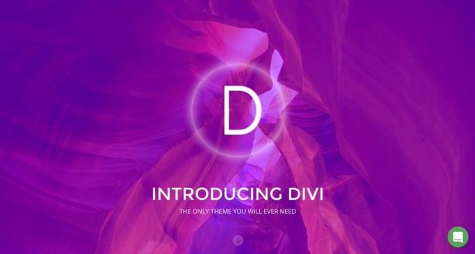 I will build modern, elegant wordpress website with divi theme