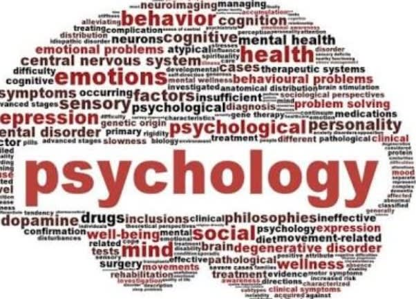 Work on all your psychology and creative writing tasks by Writerkev