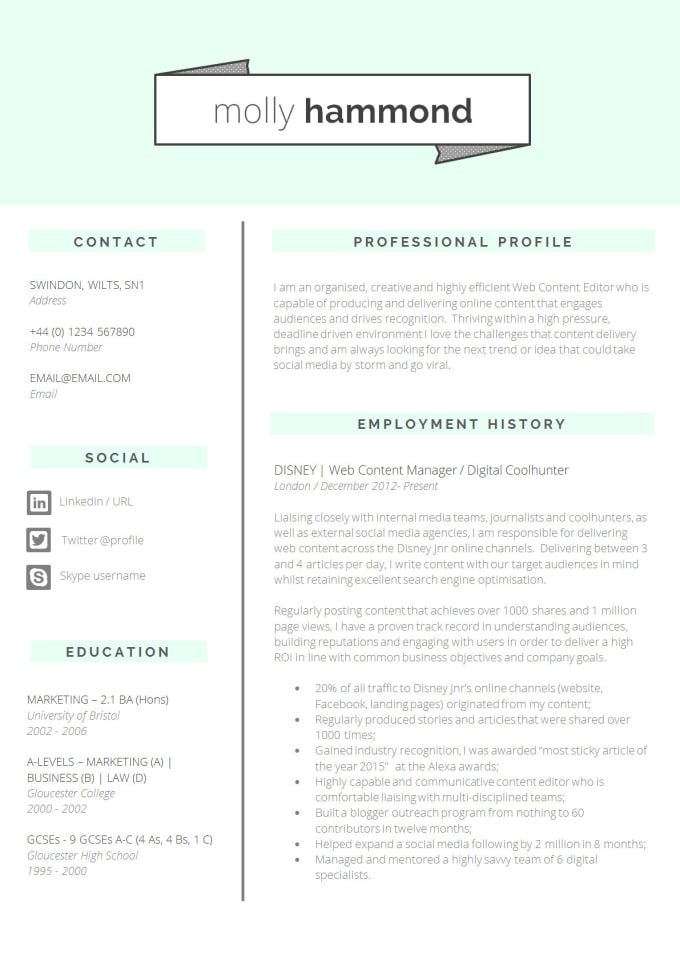 Make Professional Resume For Students And Freshers By Black Mind