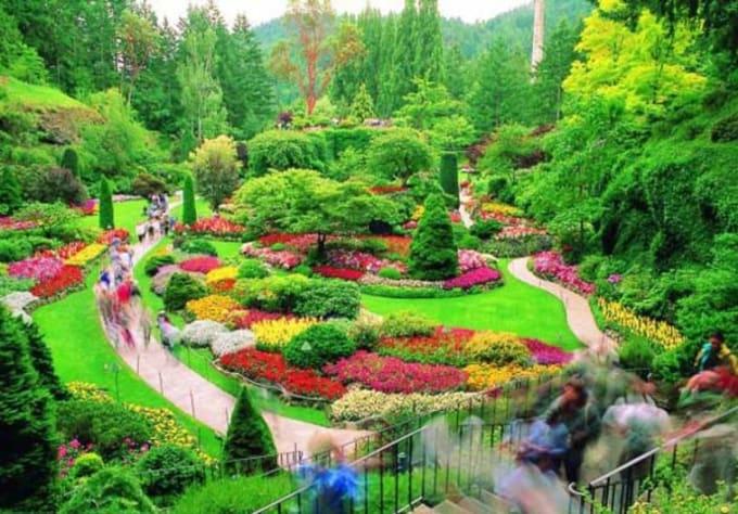 Send You 100 Beautiful Landscape And Garden Photos By Zenxmagic