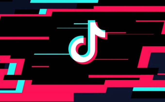 Provide you with instant tiktok followers by Socialsoup | Fiverr