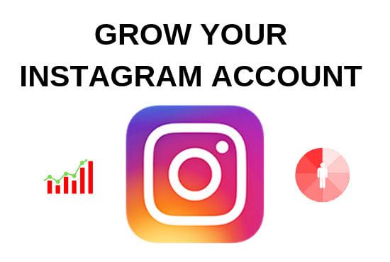 Give you my organic instagram marketing ebook by Seankirwan