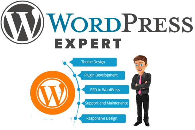 Be the expert wordpress developer by Sohaibwpexpert | Fiverr