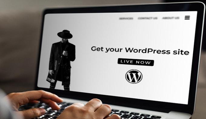 I will create a custom wordpress website or fix bugs