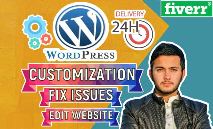 I will rebuild, edit wordpress website, wordpress customization