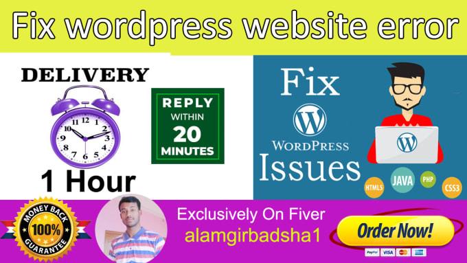 I will fix wordpress website error, issues in 1 hour