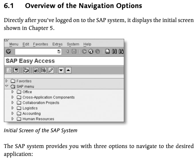 write your technical and user training manuals for sap in