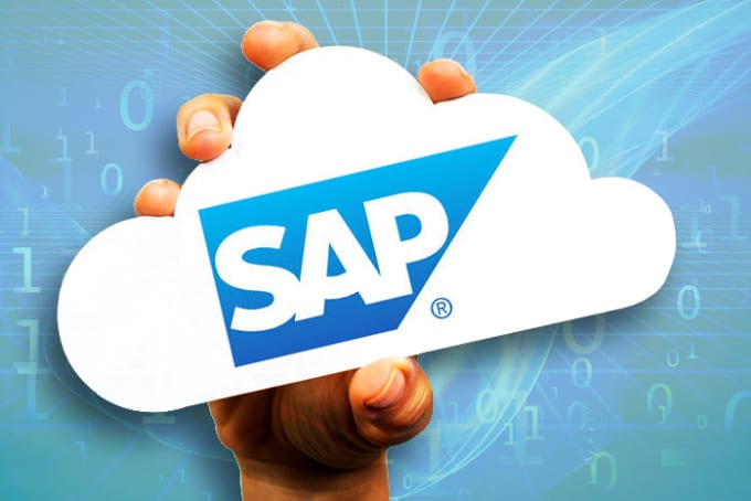 do your sap related work