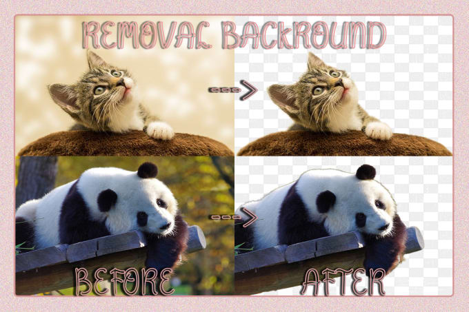 remove the background of your photos in 2 hours