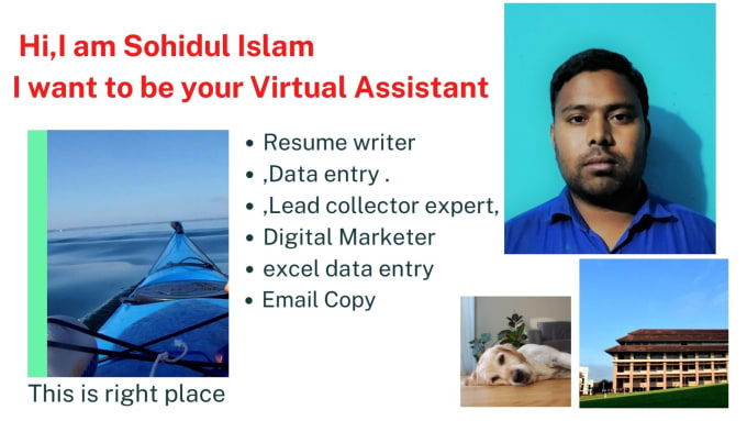 do data entry,excel entry in 24 hrs,typing work,copy paste