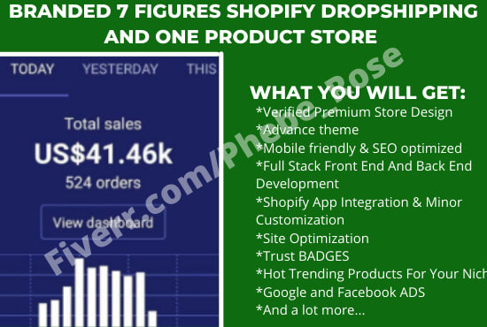 build branded 7 figures dropshipping shopify store website