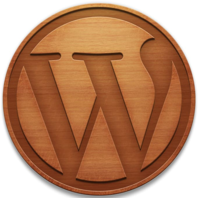 I will solve your wordpress blogs css,html,jquery and other issues