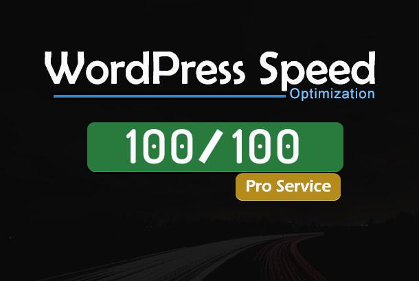 expedite wordpress speed through pro optimization