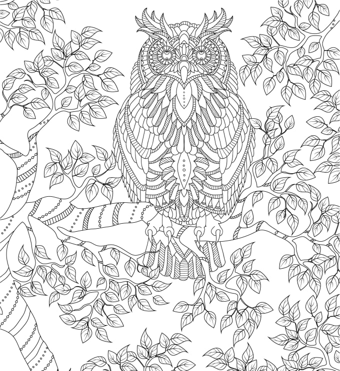 Give You 25 Already Made Detailed Adult Coloring Book Pages By Camelia1977  Fiverr