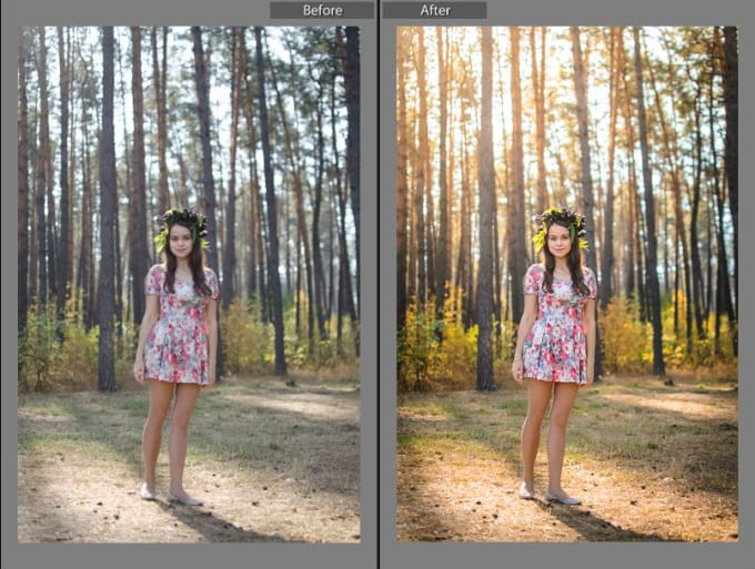 Edit 10 photos in adobe lightroom by Ande_hard