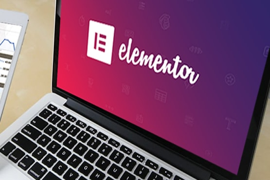 I will design your website using elementor pro page builder