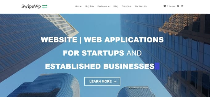 develop seo optimized wordpress website for your business
