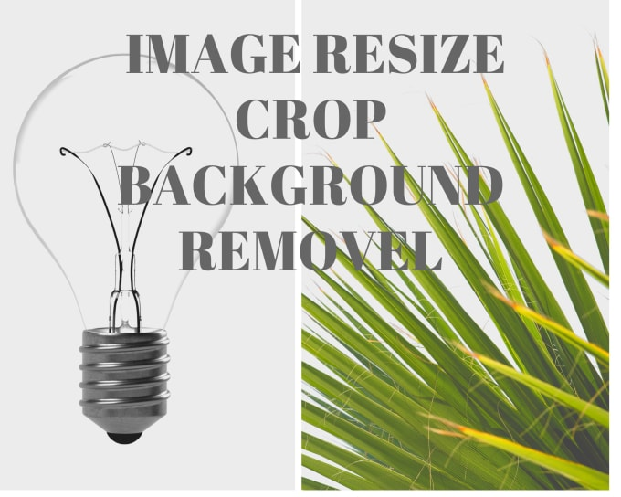 do image resize,crop and background removel
