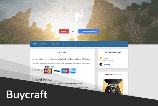 send you a buycraft theme with your minecraft server logo