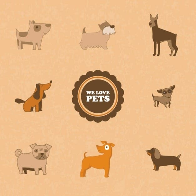 create a unique pets and animals logo design for your company in 16 hours